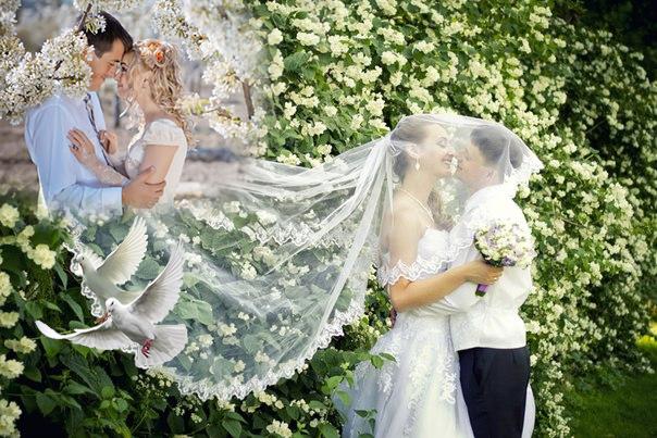 Выгоды майской свадьбы