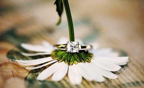 фаянсовая или ромашковая свадьба