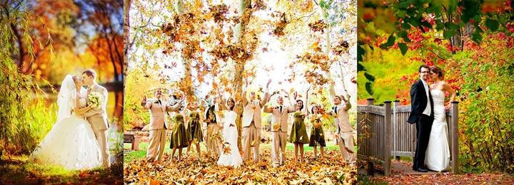 Осенняя листва и свадебная прогулка