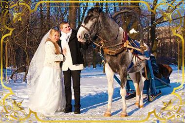 Молодожены и лошадь зимой