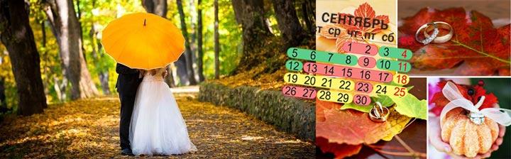 Сентябрь, молодожены под зонтом и кольца на осених листах