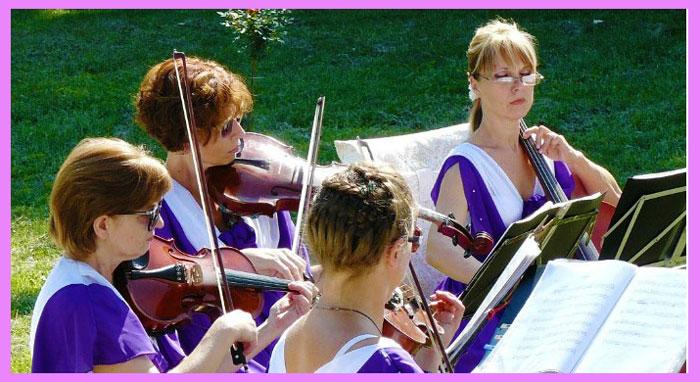 Музыкальное оформление на свадьбе