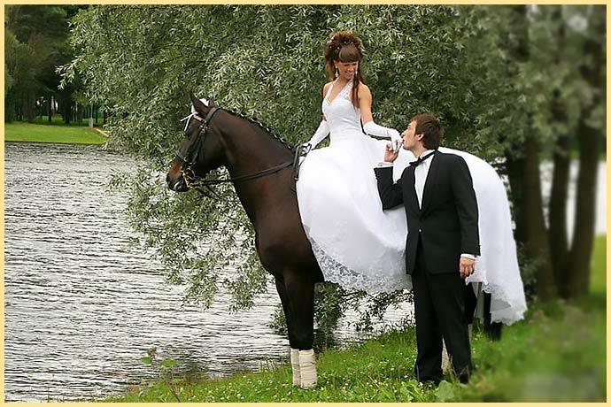 Молодожены конная погулка