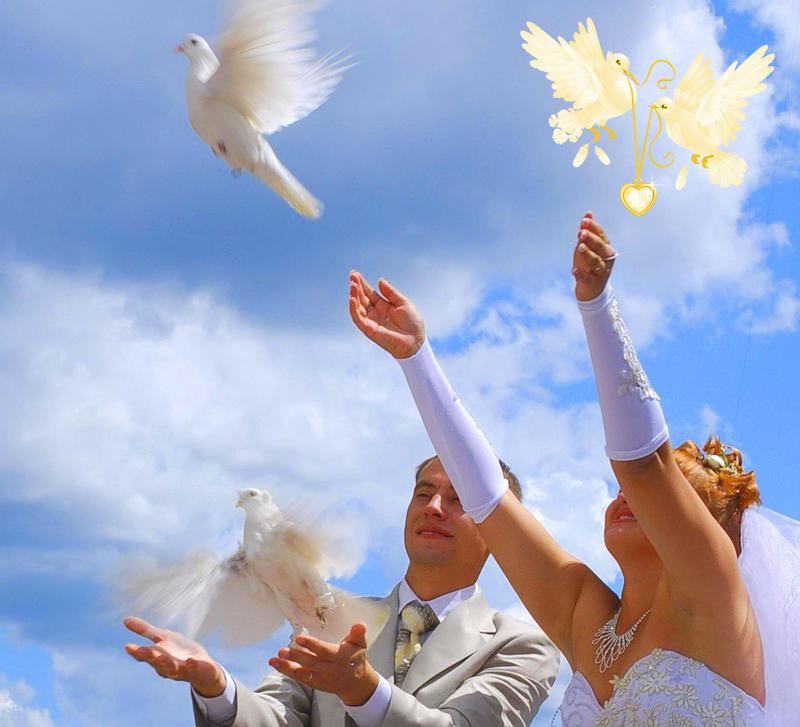 Символика голубей на свадьбе