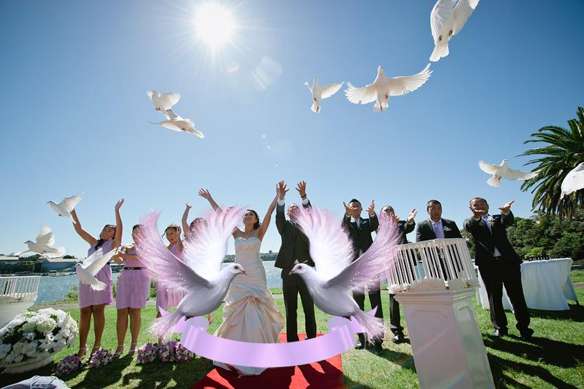 Запуск белых голубей эстетичное зрелище