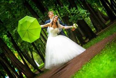 салатовая_свадьба