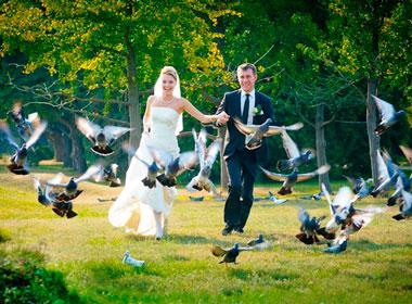 Как вести себя на свадебной видеосъемке?