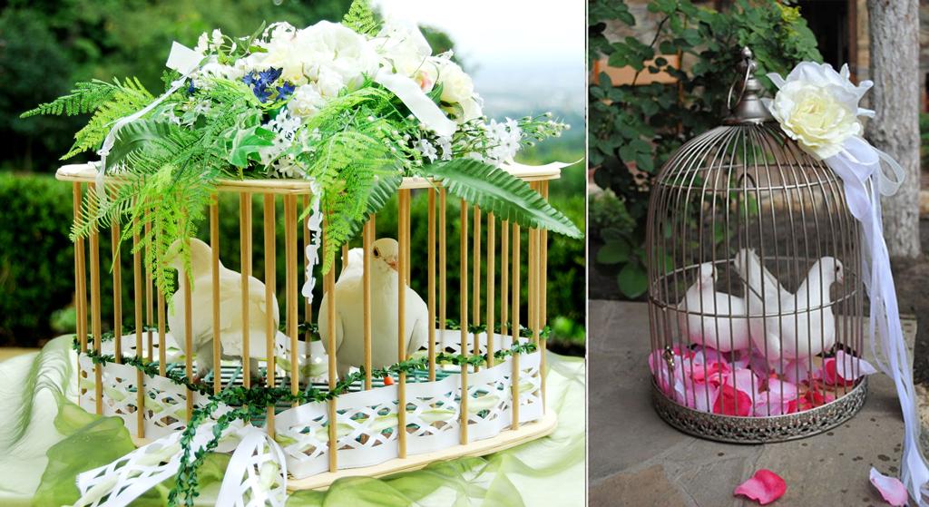 Заказ и доставка свадебных голубей