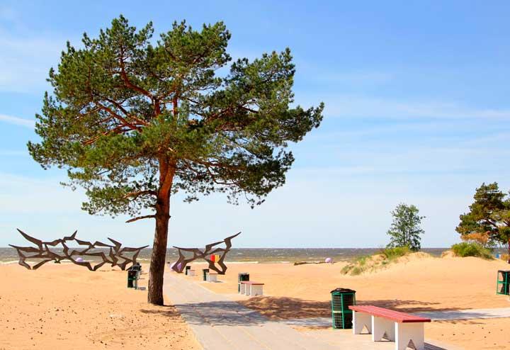 Пляж солнечный- ласковый спб