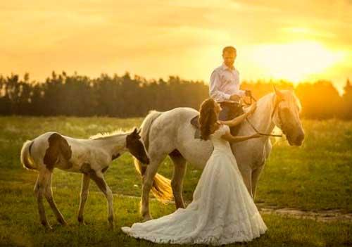 Съемка лавстори на лошадях