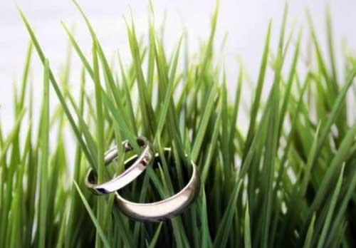 зеленая-свадьба