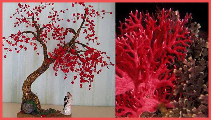 Символика коралловой свадьбы