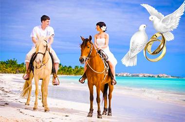 Молодожены на лошадях на пляже и голуби с кольцами