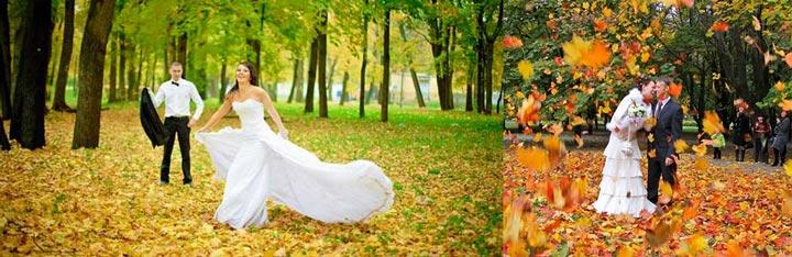 Молодожены в сентябре и кольца на осенних листах