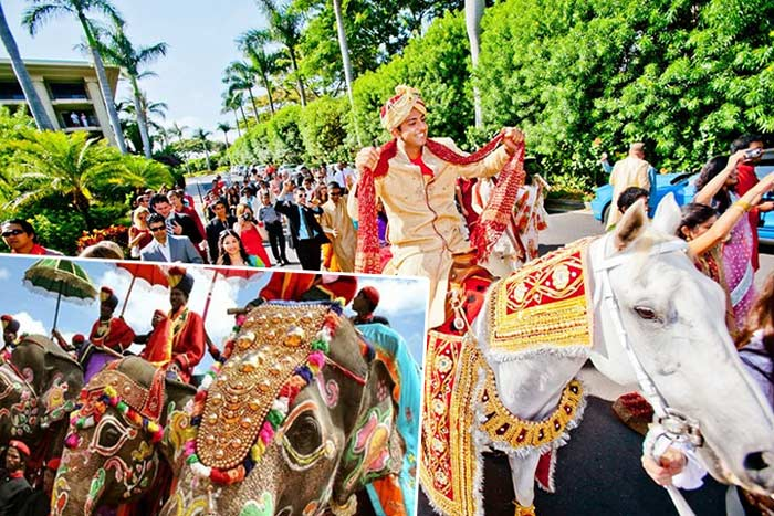 Свадебный приезд жениха в индии