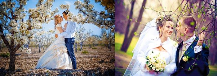 Весна и свадьба