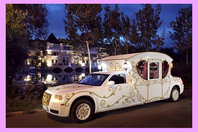 Свадебный авто и природа