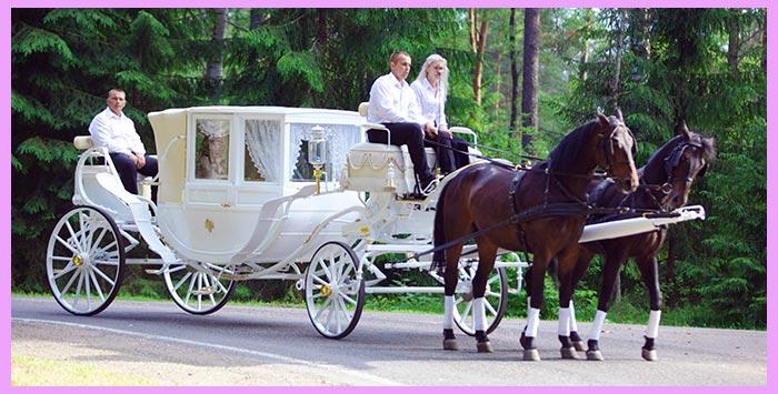 Карета на свадьбу в стиле карнавал